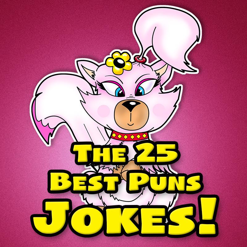 The 25 Best Pun Jokes!