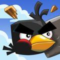 Crazy Birds